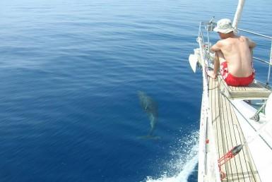 Naxos sailing yachting